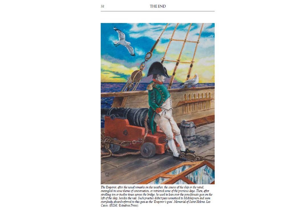 The End. Napoleon at Saint Helena (Vista 5)