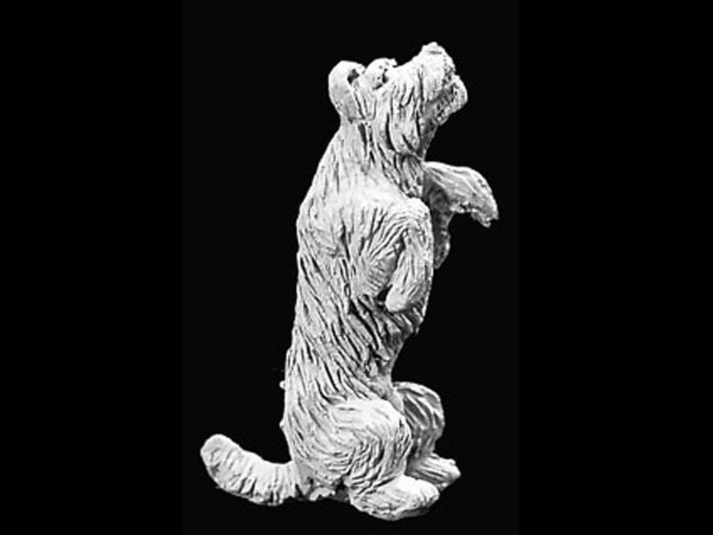 Perrito (Vista 1)