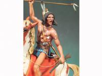 Crazy Horse 1876 (Vista 8)