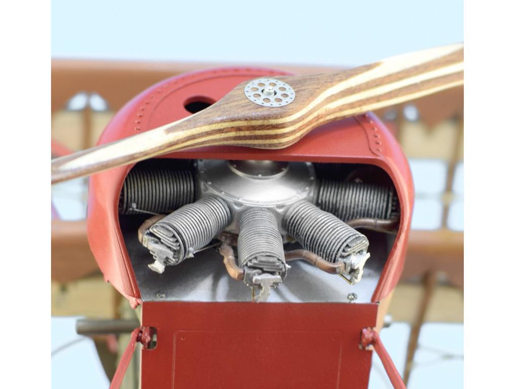 Fokker Dr.I, el Triplano del Barón Rojo (Vista 2)