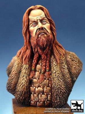 Vikingo 2  (Vista 1)