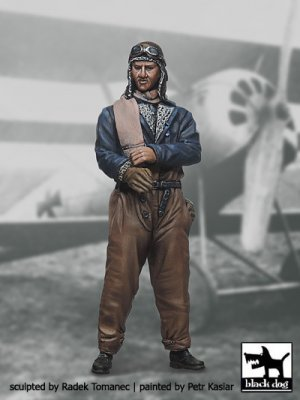 German Fighter Pilot N°4  (Vista 1)