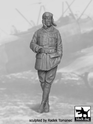 French Fighter Pilot 1914-1918 N°2  (Vista 1)