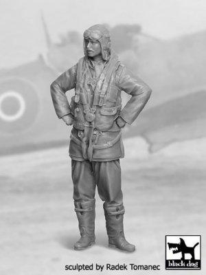 F Fighter Pilot 1940-1945 N°2  (Vista 1)