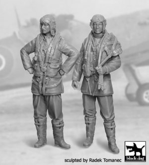 RAF Fighter Pilot 1940-1945 Set  (Vista 1)