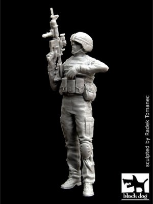 US soldier in Iraq N°1  (Vista 1)