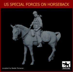 US Special forces on horse  (Vista 2)