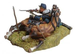 Shot down US Cavalryman and Horse  (Vista 3)