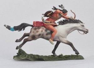 Galloping Cheyenne  (Vista 2)