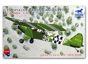 Piper Cub L4 Grasshopper  (Vista 1)
