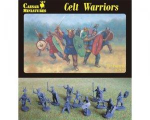 Guerreros Celtas  (Vista 1)