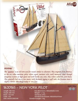 Pilot New York  (Vista 3)