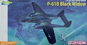 P-61B Black Widow  (Vista 1)