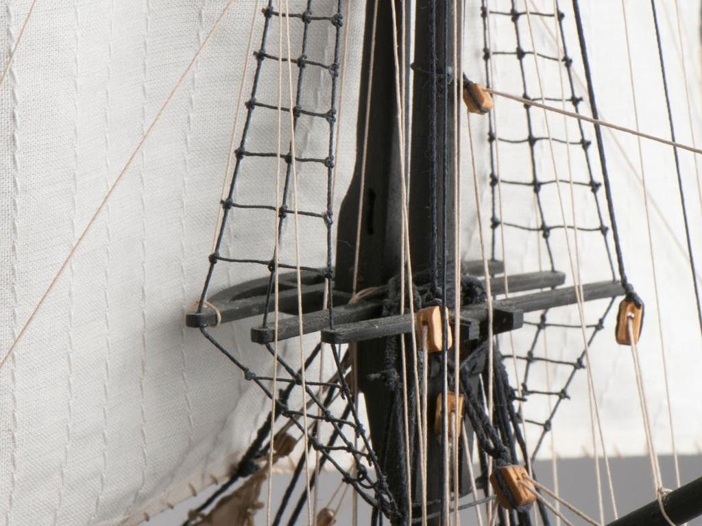 Le Cerf, 1779-1780   (Vista 6)