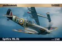 Spitfire Mk.IIb (Vista 3)