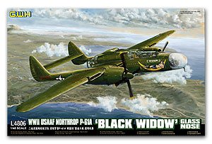 Northrop P-61A Black Widow Glass nose  (Vista 1)