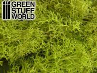 Musgo - Mezcla Verdes (Vista 6)
