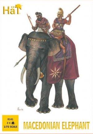 Macedonian Elephant  (Vista 1)