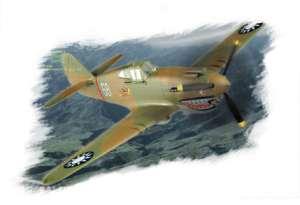 """P-40B/C """"Hawk""""-81  (Vista 1)"""