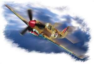 """P-40M """"Warhawk""""  (Vista 1)"""