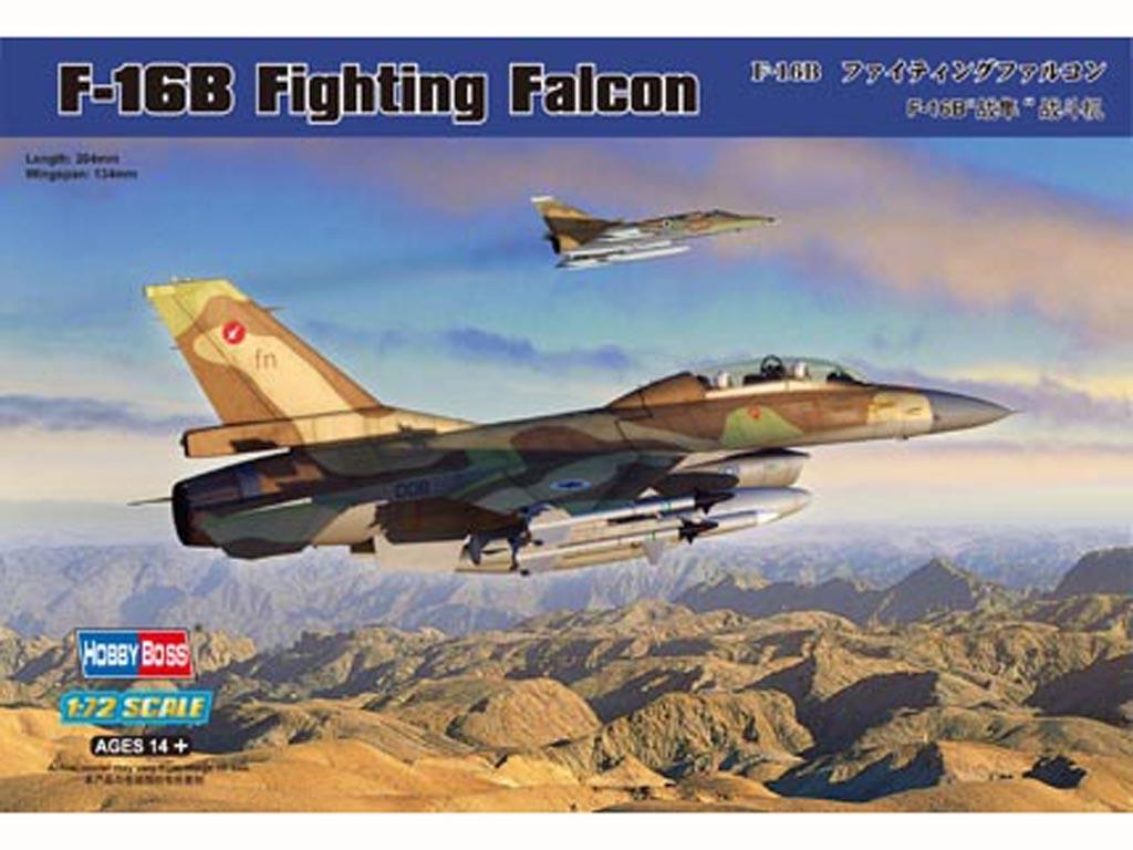 F-16B Fighting Falcon  (Vista 1)