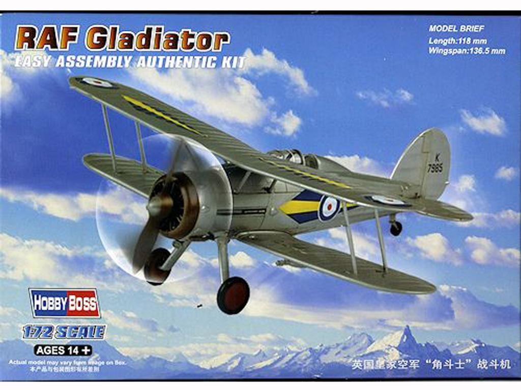 RAF Gladiator  (Vista 1)