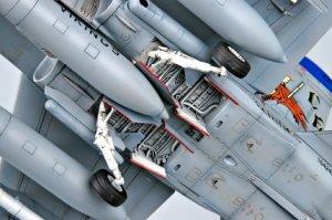 F/A-18D   (Vista 3)