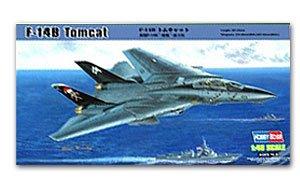 F-14B Tomcat  (Vista 1)