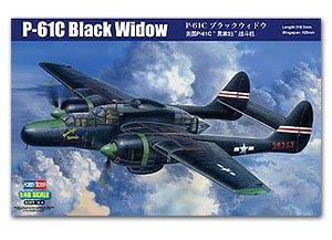 P-61C Black Widow  (Vista 1)