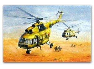 Mi-17 Hip-H  (Vista 1)
