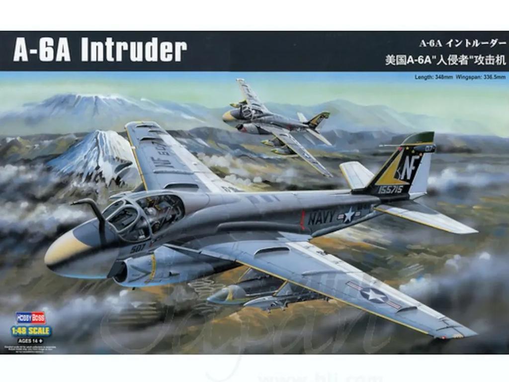 A-6A Intruder (Vista 1)