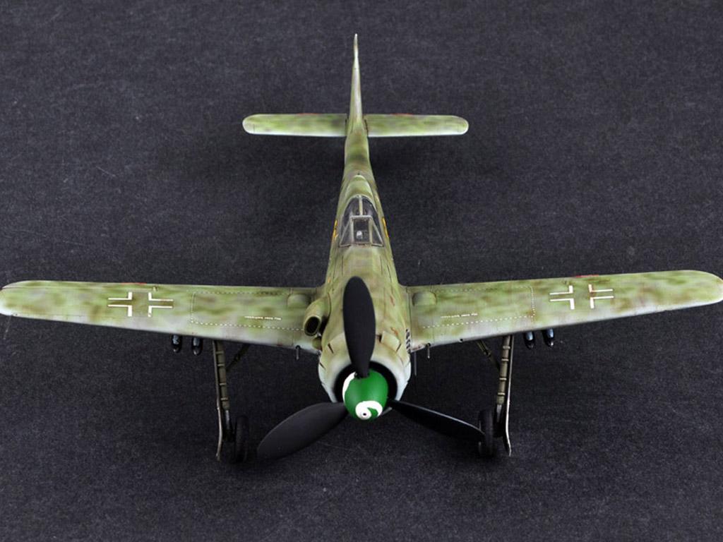 Focke-Wulf FW190D-13 (Vista 2)