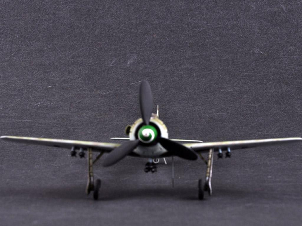 Focke-Wulf FW190D-13 (Vista 8)