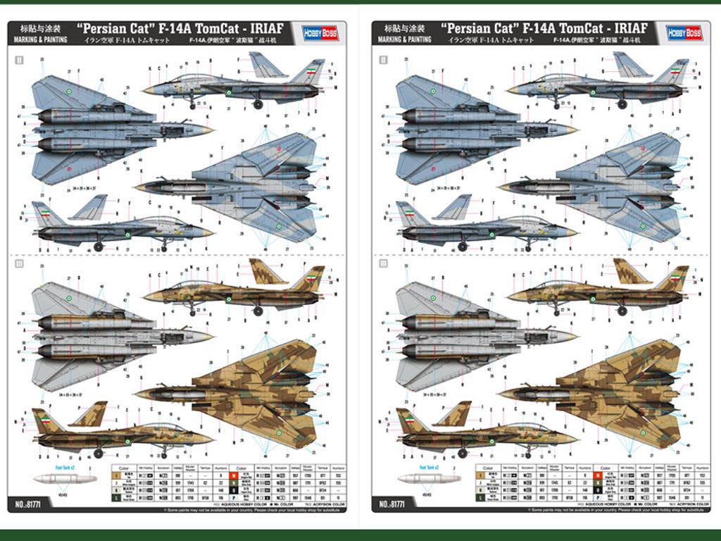 Gato persa F-14A TomCat - IRIAF  (Vista 2)
