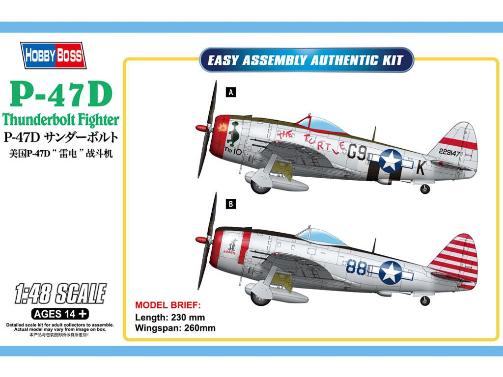 P-47D Thunderbolt Fighter (Vista 1)