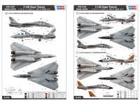F-14D Super Tomcat (Vista 5)
