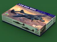 P-61B Black Widow (Vista 4)