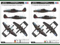 P-61B Black Widow (Vista 5)