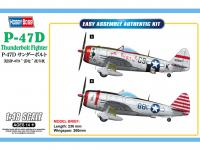 P-47D Thunderbolt Fighter (Vista 4)