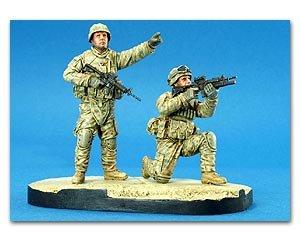 U.S. Stryker Brigade   (Vista 1)
