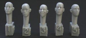 5 Cabezas diferentes  (Vista 1)