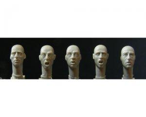 Cabezas calvas  (Vista 1)