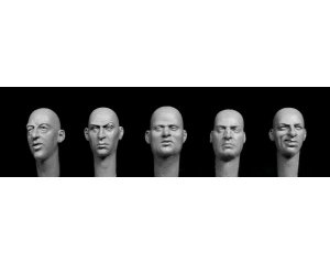 5 additional bald heads, European featur  (Vista 1)