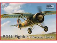 P.11b Fighter in Romanian Service (Vista 2)