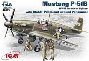 Mustang P-51B  (Vista 1)