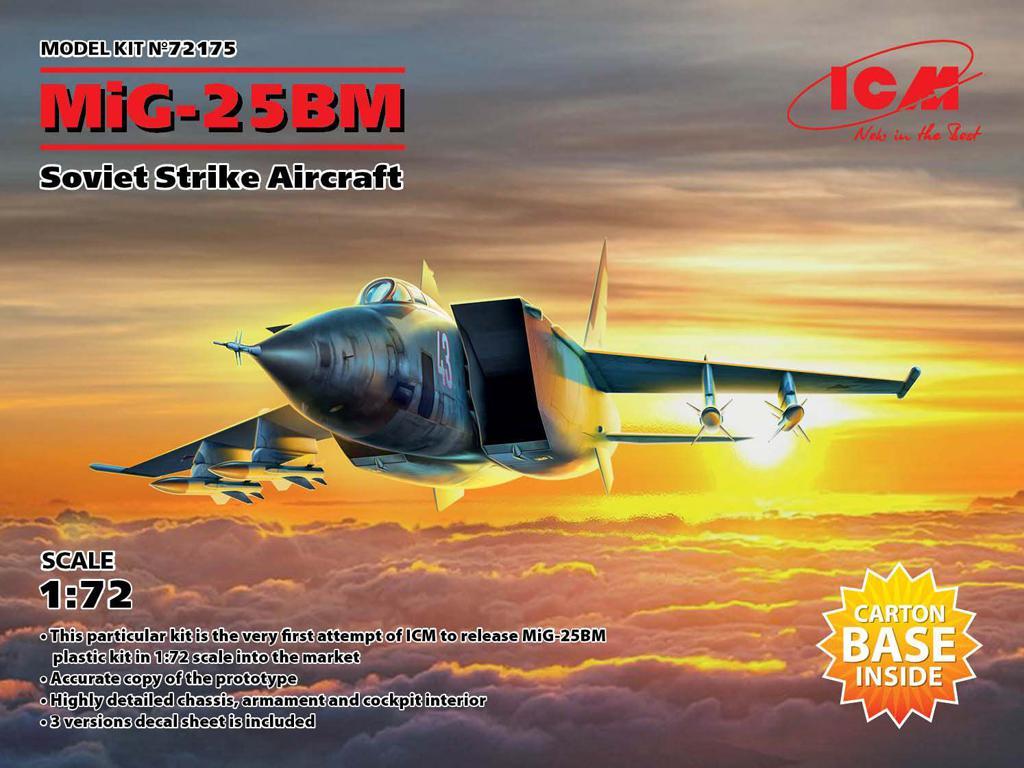 MiG-25 BM, Soviet Strike Aircraft (Vista 1)