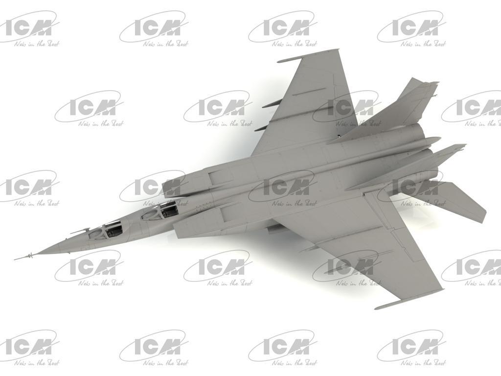 MiG-25PU, Soviet Training Aircraft (Vista 2)