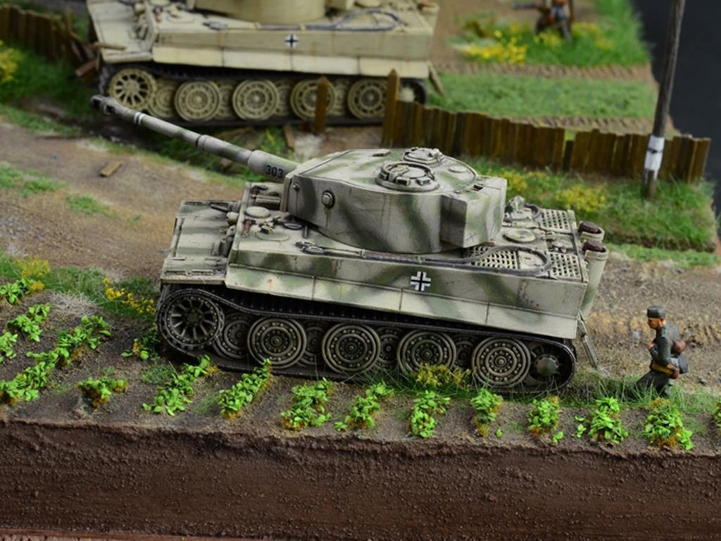 1944 Batalla en Malinava  (Vista 3)