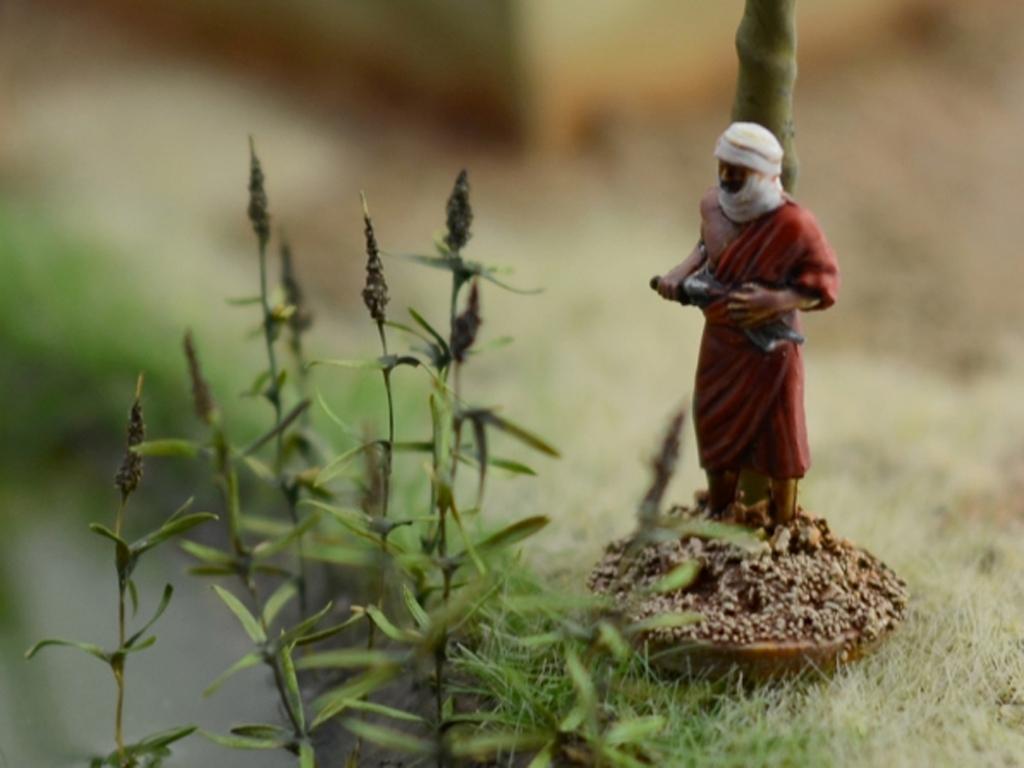 Beau Geste: Revuelta Tuareg Argelina  (Vista 3)