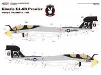 Grumman EA-6B VMAQ-2 (Vista 5)